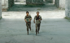 fmp-the-maze-runner