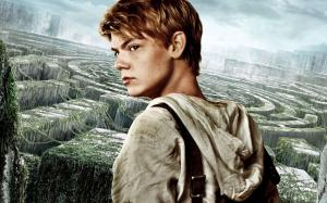 thomas-brodie-sangster-in-the-maze-runner-hd